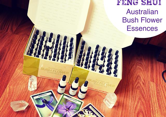 3 Favourite Australian Bush Flower Essences for Feng Shui